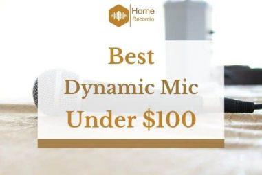 5 Best Dynamic Mics Under $100 in 2021