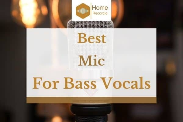 5 Best Mics For Bass Vocals in 2021