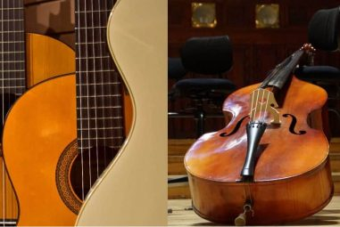 Guitar vs Cello – What Is The Difference?