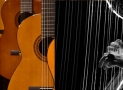 Guitar vs Harp – A Comparison